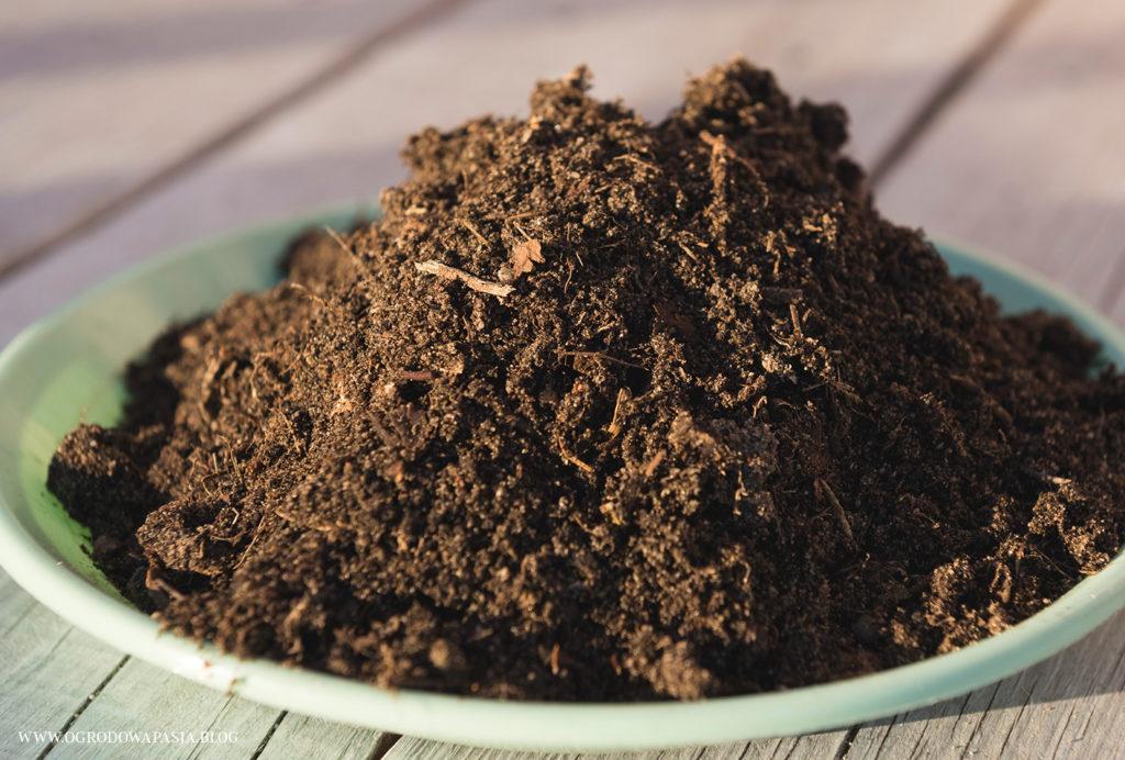gotowy kompost