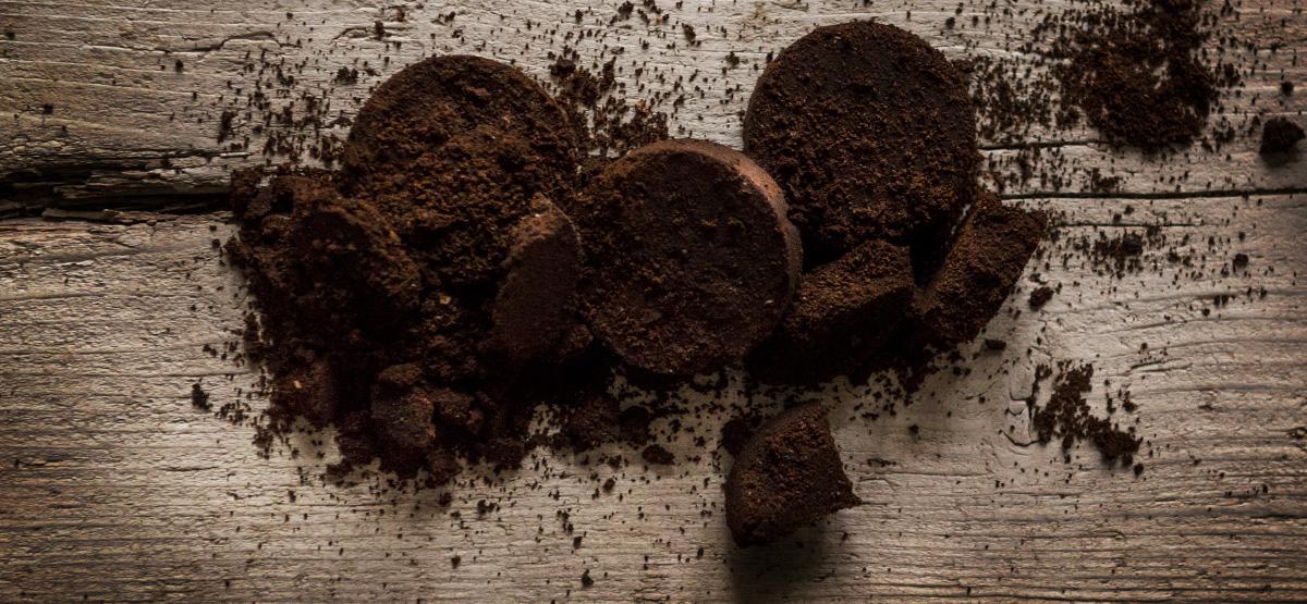 Fusy Z Kawy Jako Nawóz Ogrodowa Pasja