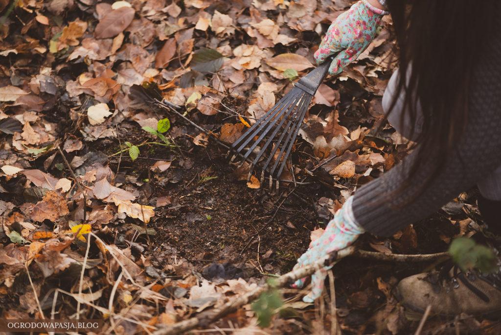 jak zrobić ziemię liściową
