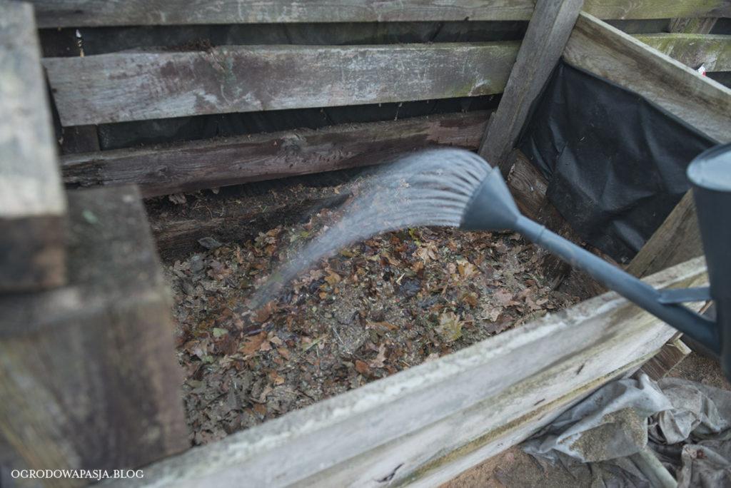 wilgotność kompostu liściowego