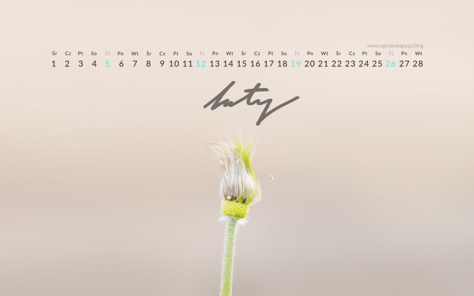 kalendarz na pulpit 2017 luty