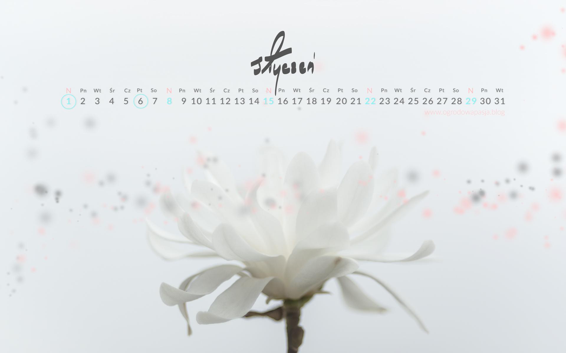 kalendarz na pulpit 2017 styczeń