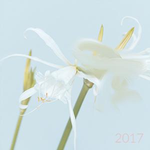 kalendarz na pulpit 2017