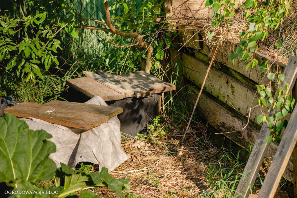 jak używać gnojówki z pokrzyw