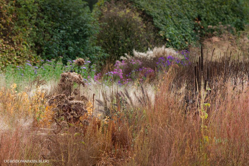 Hummelo garden