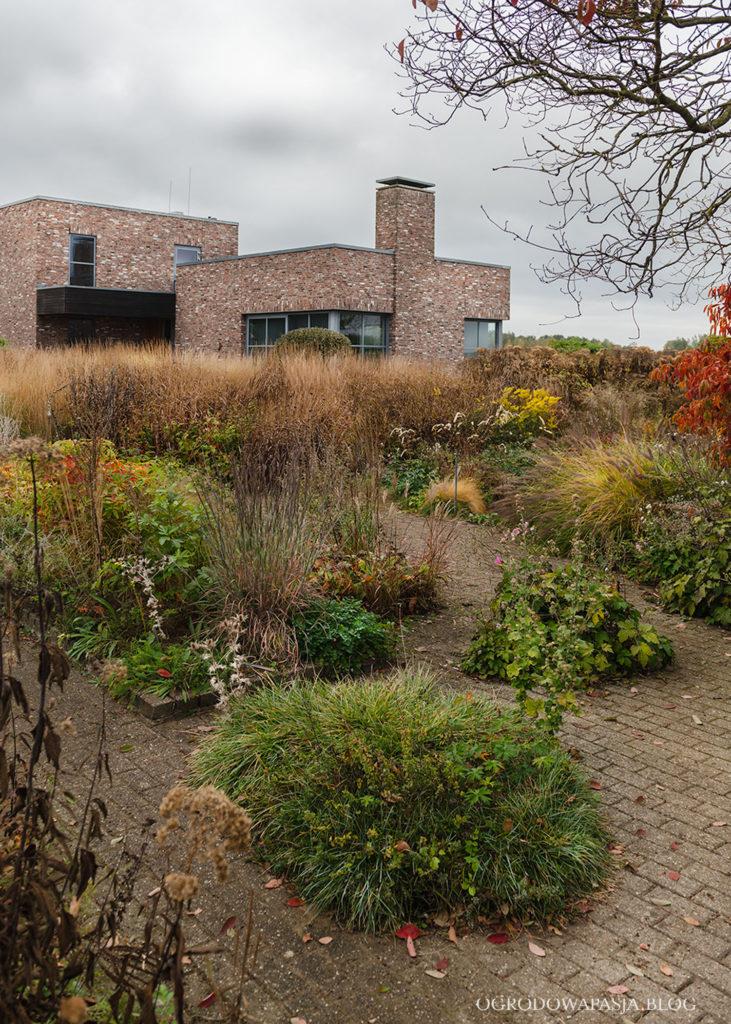 ruderal garden