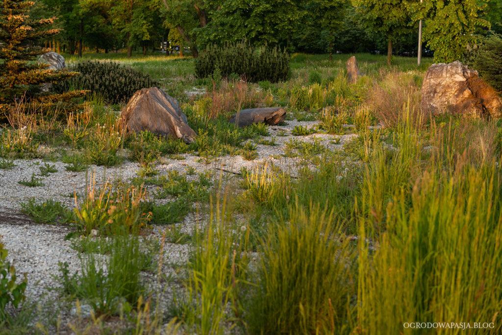miejski ogród naturalistyczny