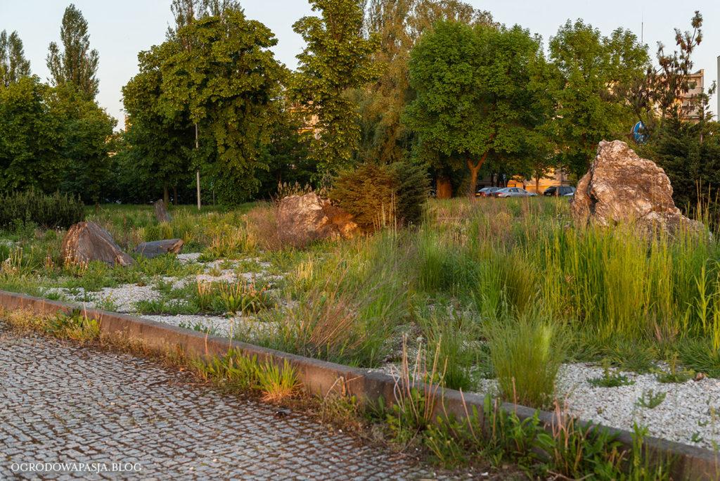 ogród w mieście